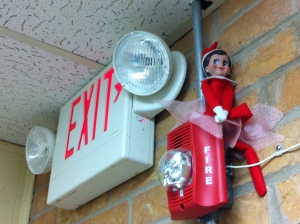 Pippi the Safety Inspector